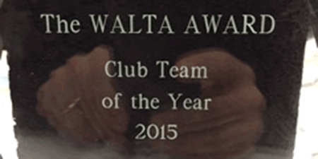 Club team of the year 2015 - Men's first team